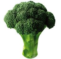 dom_broccoli_img_01.jpg