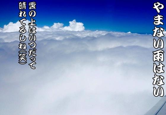 雲の上は.jpg