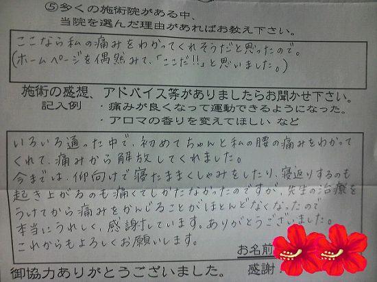 voice6.jpg
